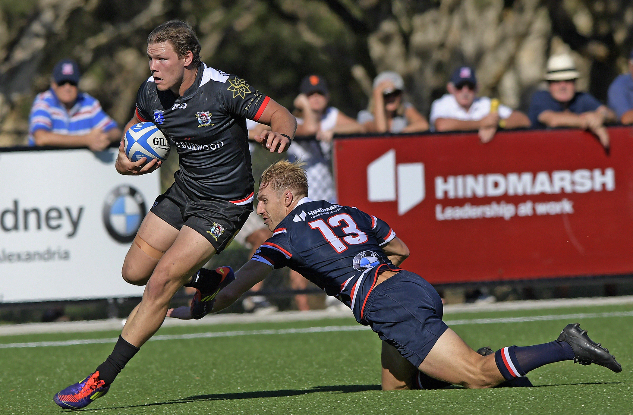 West harbour rugby shute shield betting spurs thunder line betting college